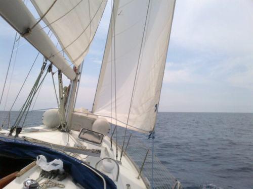 Cisterna_di_latina-20120526-00